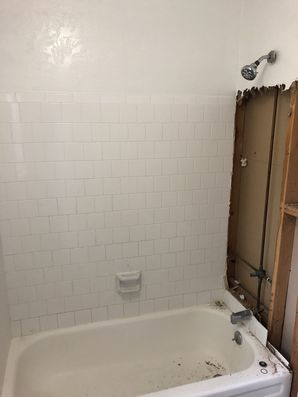 Bathtub to Walk in Shower Conversion in Houston, TX (2)